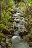 Rio de camino a Candelario